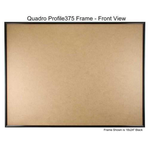 17x22 Picture Frames - Profile375 - Box of 12