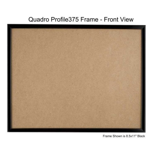 9x12 picture frames profile375 glass box of 36 plastic box of 48. Black Bedroom Furniture Sets. Home Design Ideas